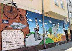Novi-Sad-bike-tour (3)