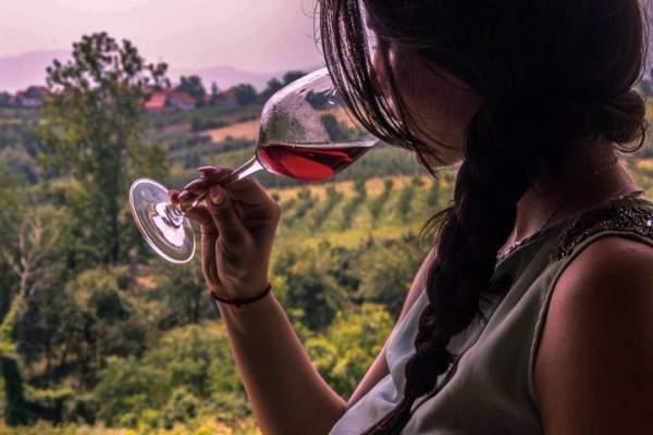 Winery-Aleksandrovic