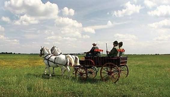 Sombor-cariagge-ride