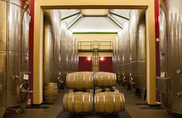 Wine-celar-sumadija