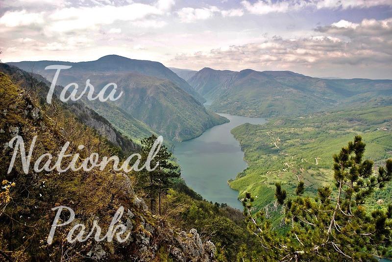 National-park-Tara