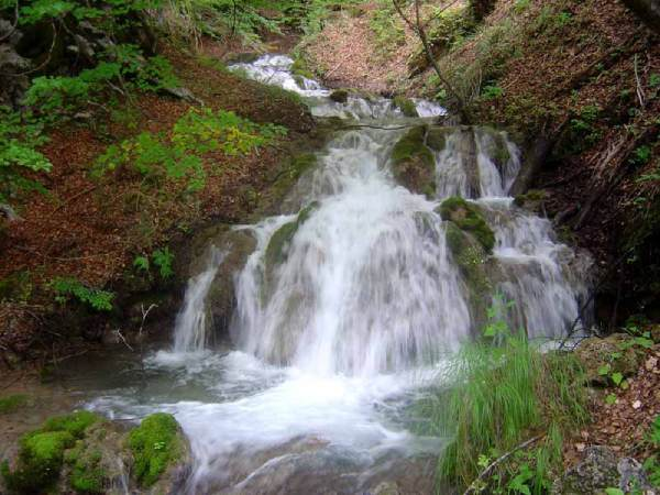 Sopotnica-waterfalls