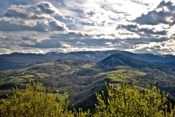 Zlatibor-landscape