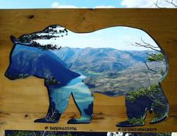 Bear-frame-viewpoint-tara