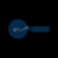 nth Sense Logo-02.png