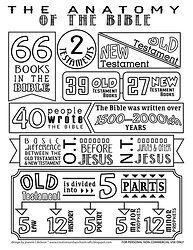 Bible divisions.jpg