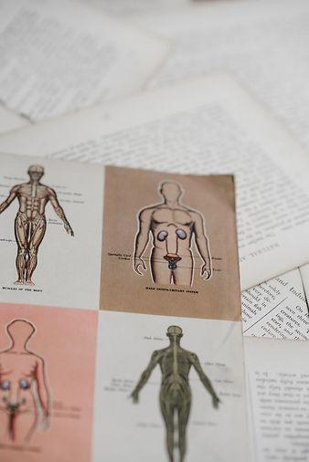mission-clinique-vertebrex