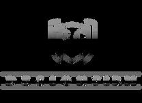 logo BG DESIGN FIRM logo Cromato sfondo bianco.png