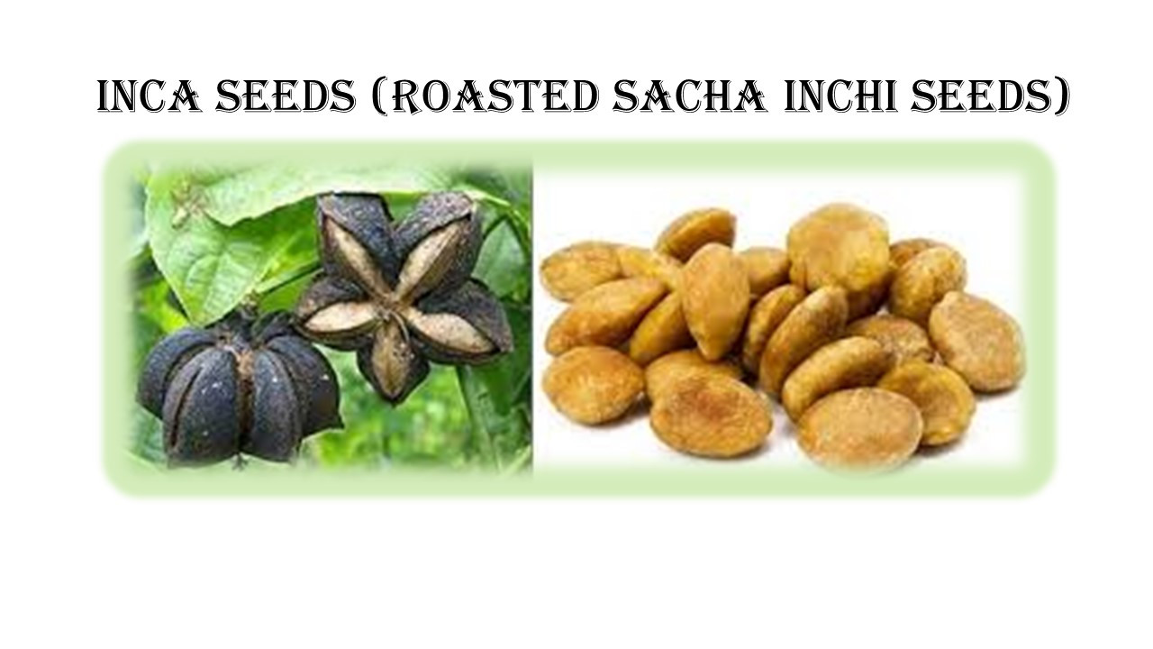 Inca Seeds plant & Seeds.jpg