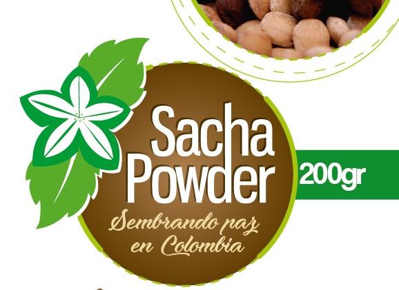 Sacha logo 2.jpg