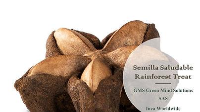 Semilla Saludable logo nov 2019- Eng Rai