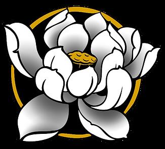 White Lotus Best Tattoo Piercing Shop In Denver Colorado