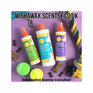 Washwax Scentsy.jpg
