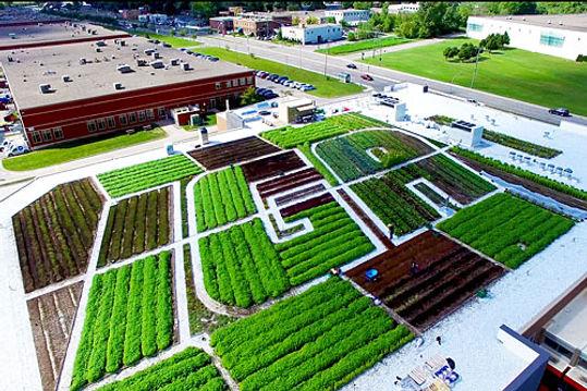 agriculture-urbaine4p_dos.jpg