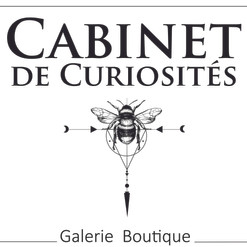 logo_cabinet_des_curiositesfina_lh_r.jpg