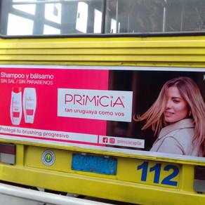 ¡Primicia está en la calle!