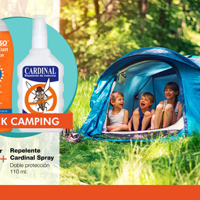 ¿Te vas de camping? ¡No olvides el kit imprescindible!