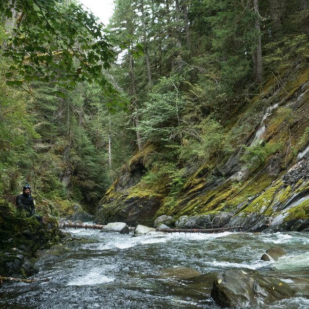 ELWHA: RISING FROM THE ASHES