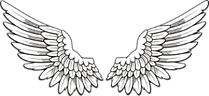 wings_edited_edited.png