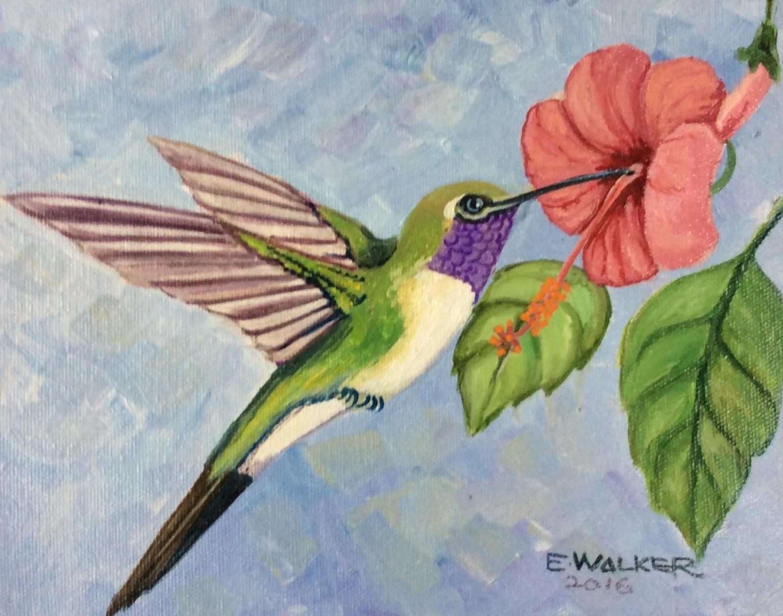 Hummingbird Series IV