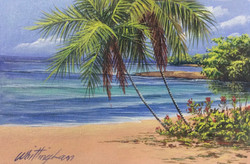 Salem Beach, Runaway Bay