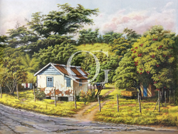 Cottage by the Road