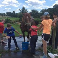 washing horses.jpg