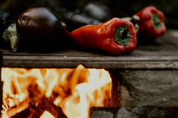 Exclusive Cooking and Tasting In Umbria