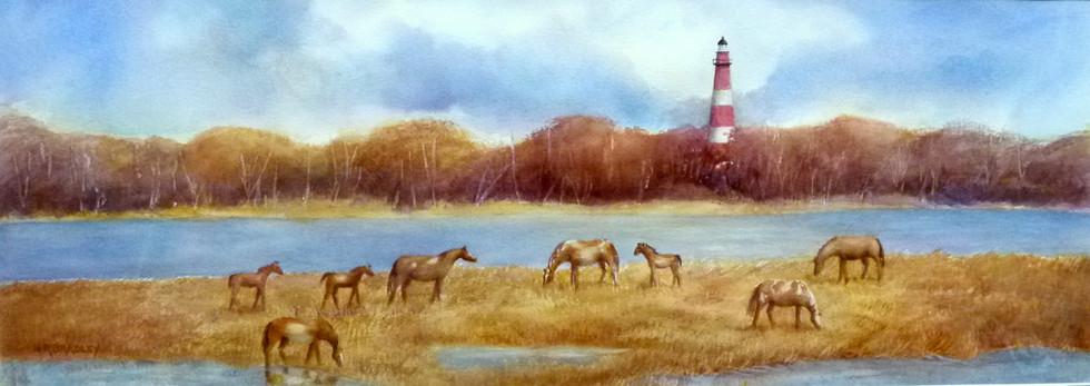 Pony-scape, Chincoteague