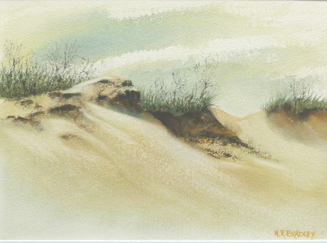 Dune-scape
