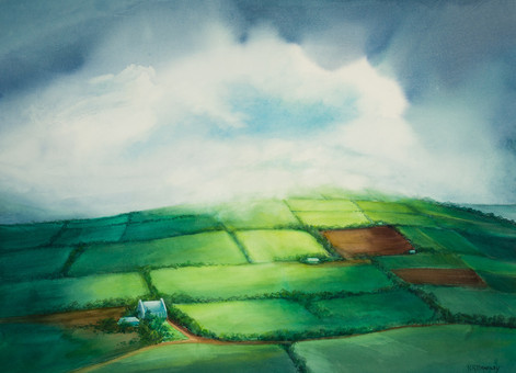 Fields of Ireland