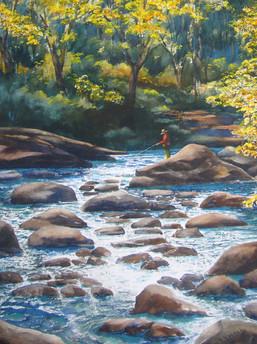 Afternoon At Boulder Creek