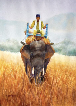 Going to Market. India