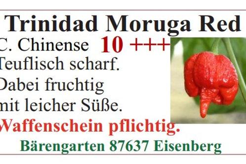 Chilisamen - Trinidad Moruga Red