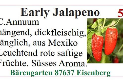 Chilisamen - Early Jalapeno