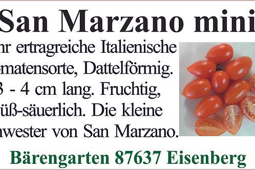 Tomate klein - San Marzano mini