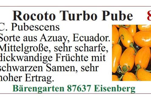 Chilisamen - Rocoto Turbo Pube