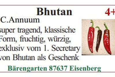 Chilisamen - Bhutan