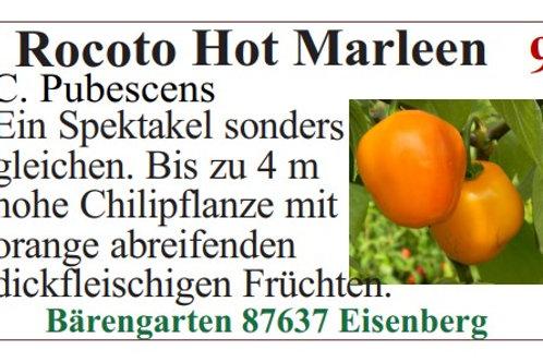 Chilisamen - Rocoto Hot Marleen