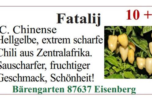 Chilisamen - Fatalij