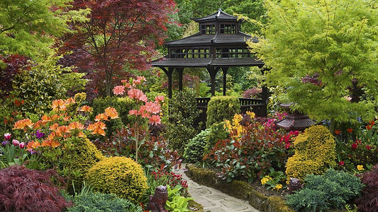 belle-zen-garden-papier-peint-jardin-gaz