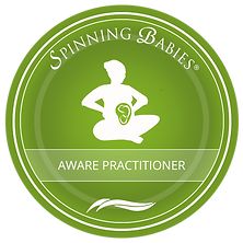 spinning babies aware practitioner.png
