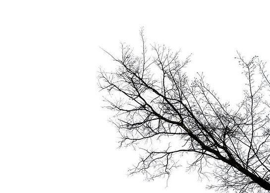 Minimal-tree_art.jpg