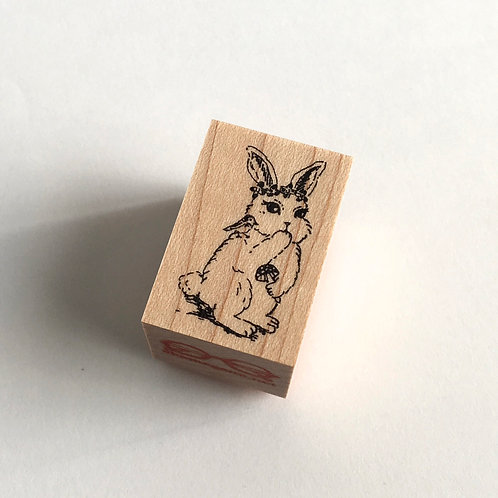 Nina the rabbit