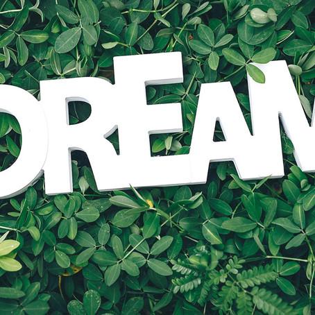 Hält der Traumjob, was er verspricht?