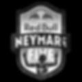 Logo NJ5 2019.png