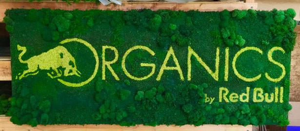Colorful Preserved Moss Vertical Garden branding, logo