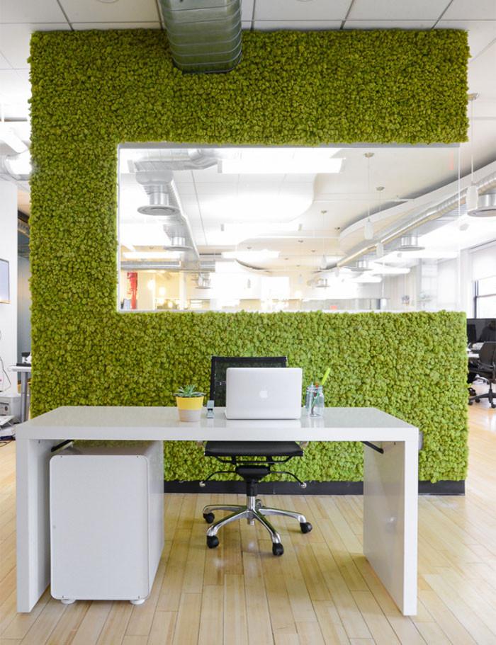 Preserved Moss Vertical Garden in an open office