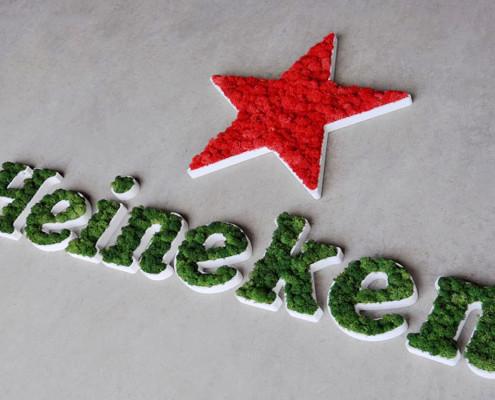 Heineken logo preserved moss