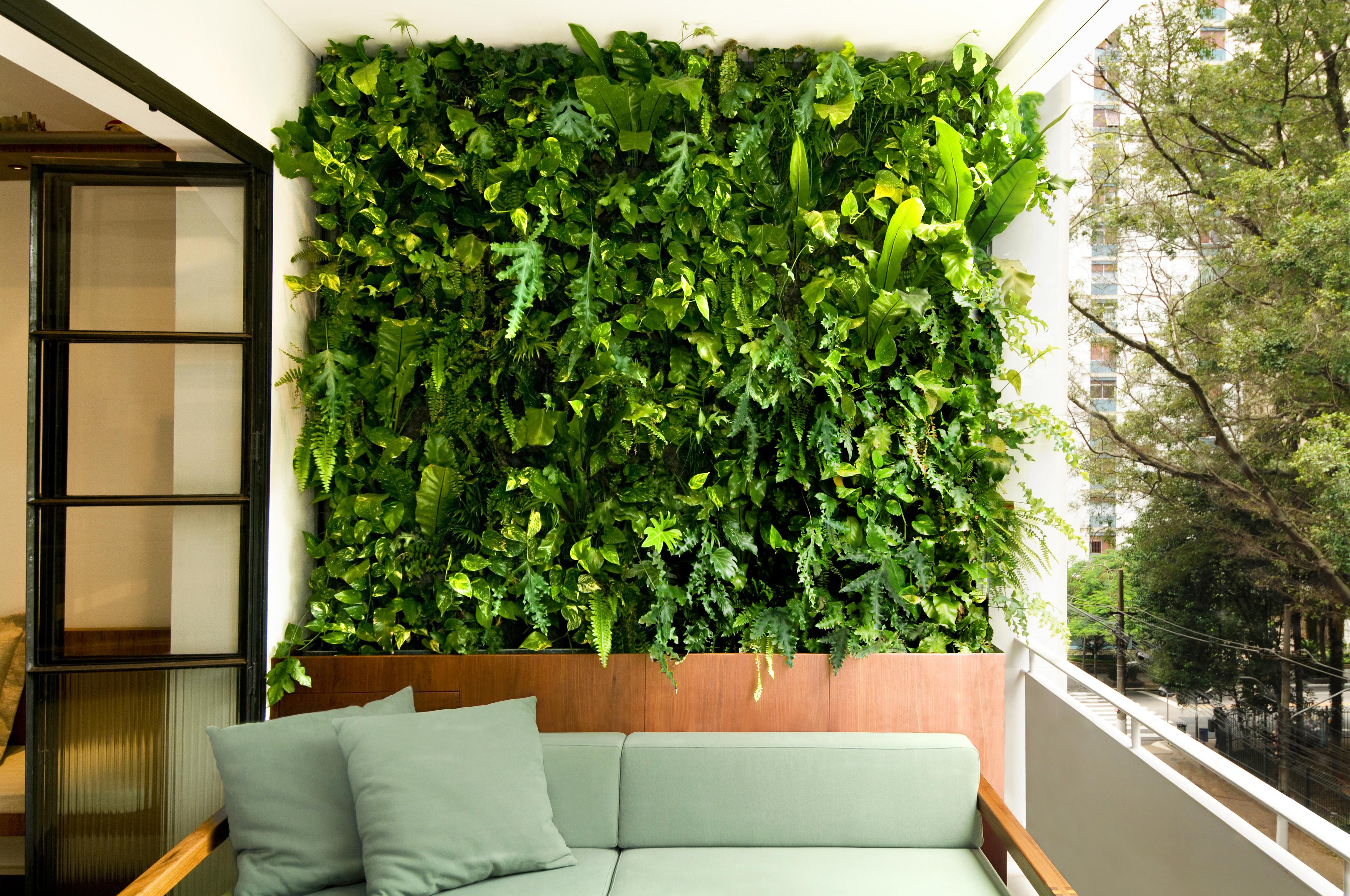 Natural Vertical Garden - exterior 12